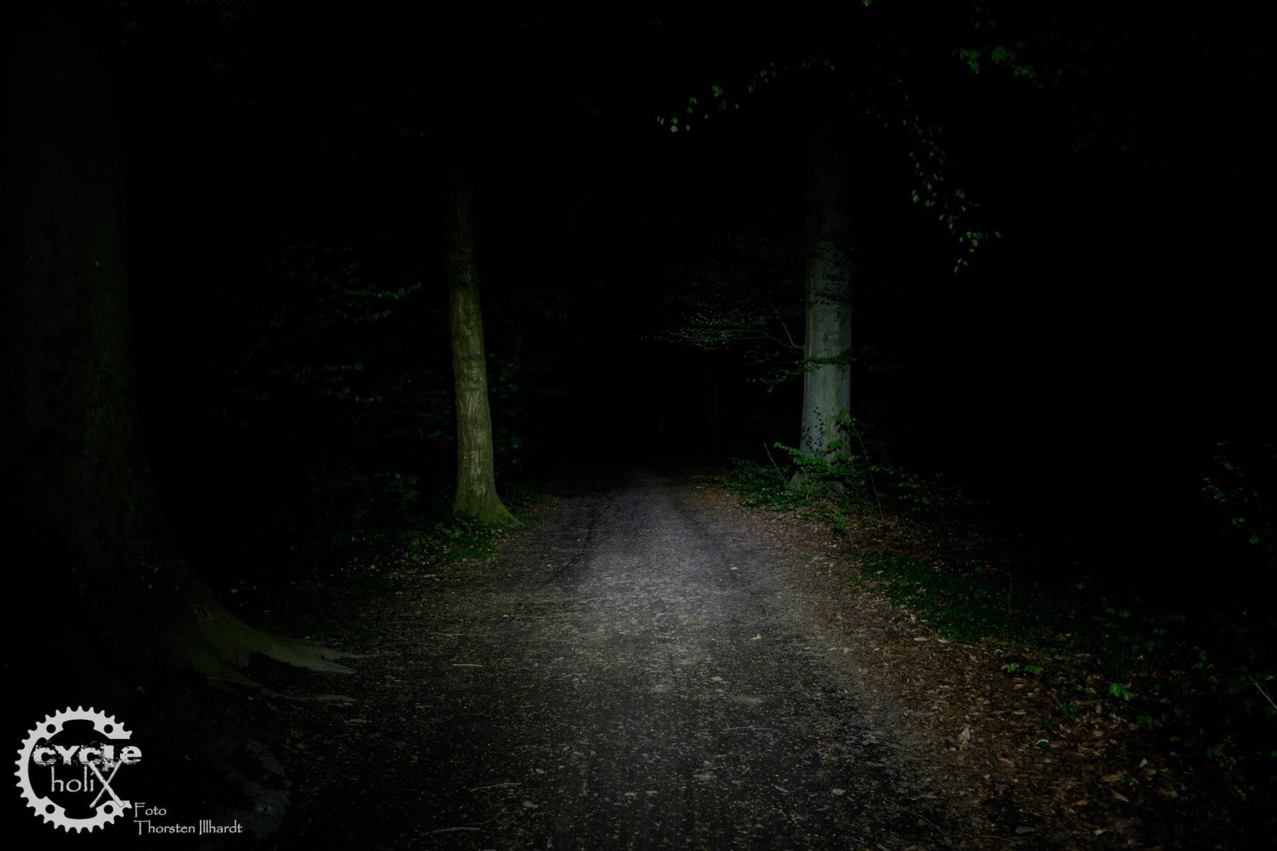 60 Lumen für den Hinweg in den Wald