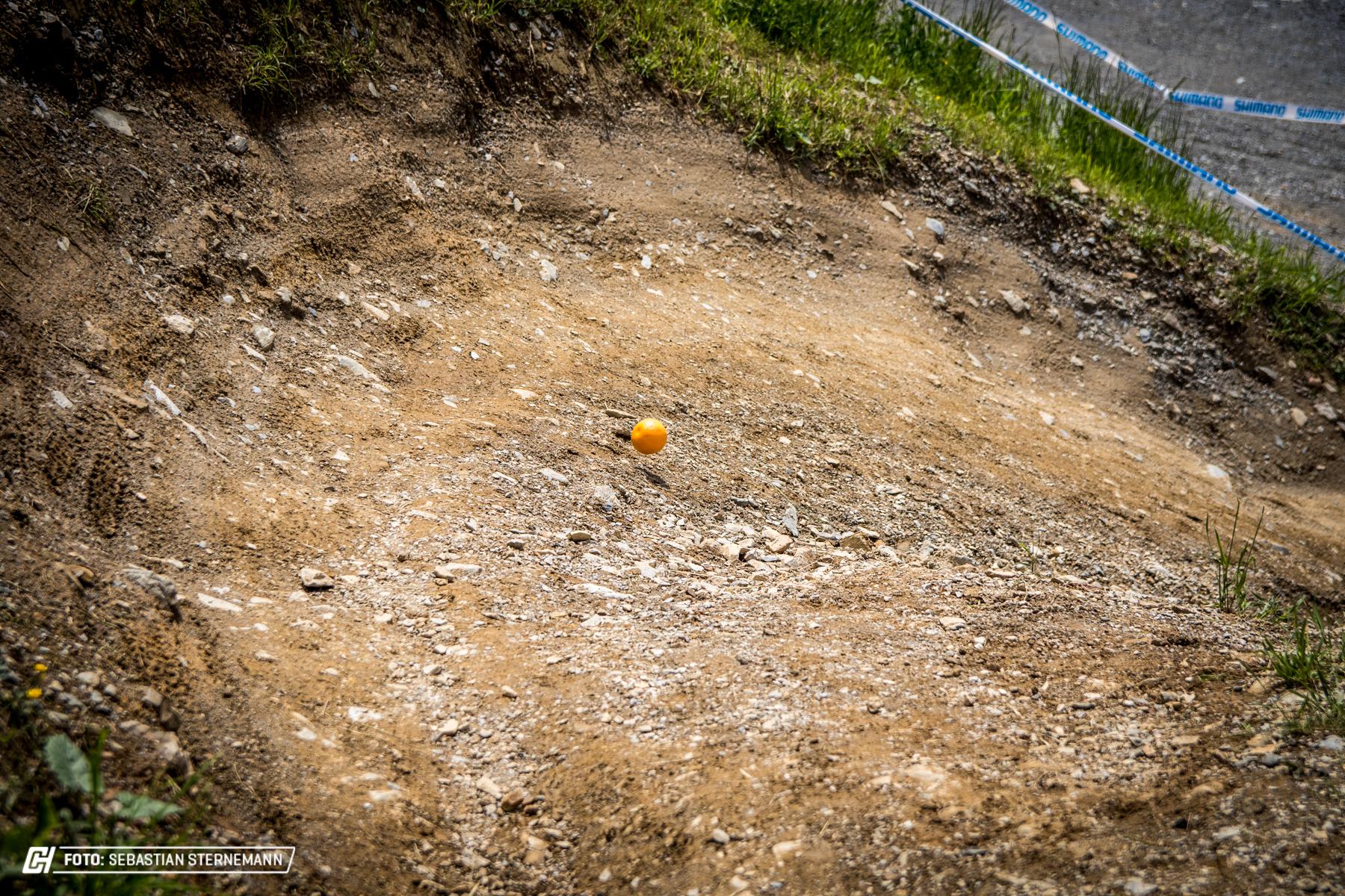 Leogang Trackwalk69