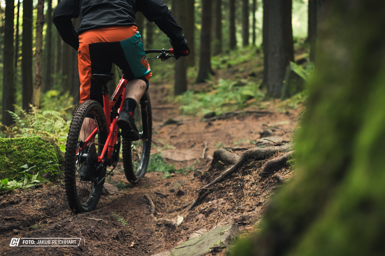 CHX Heidelberg Phil 29 1 Cycleholix