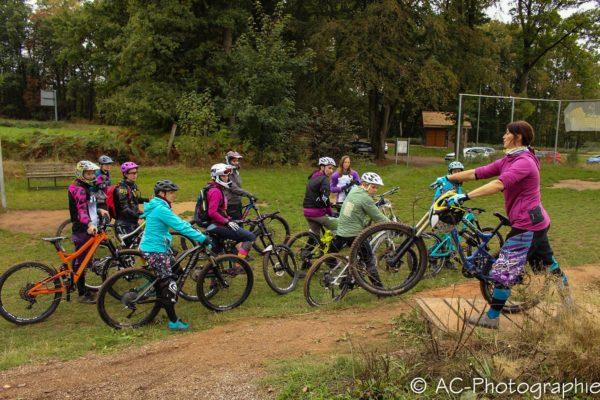 Bild2 Cycleholix