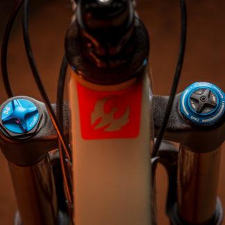 Pivot Firebird 29 bike details 1889