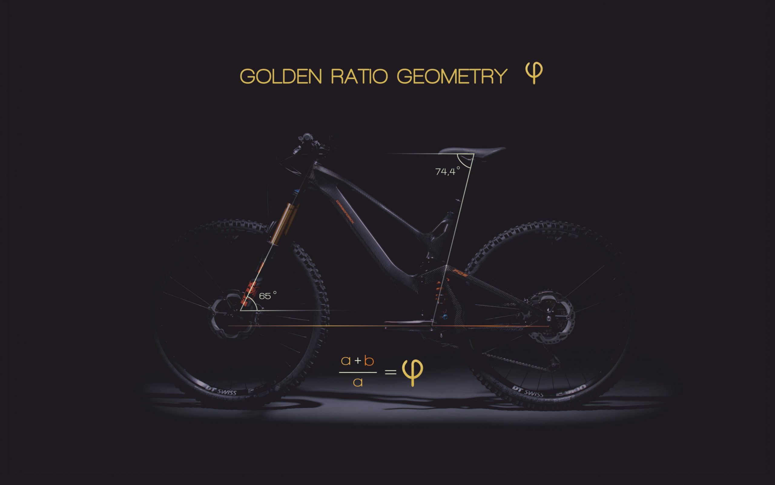 carbonjack enduro 2020 golden ratio scaled