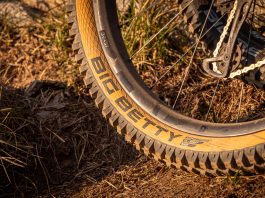 Schwalbe Big Betty skin
