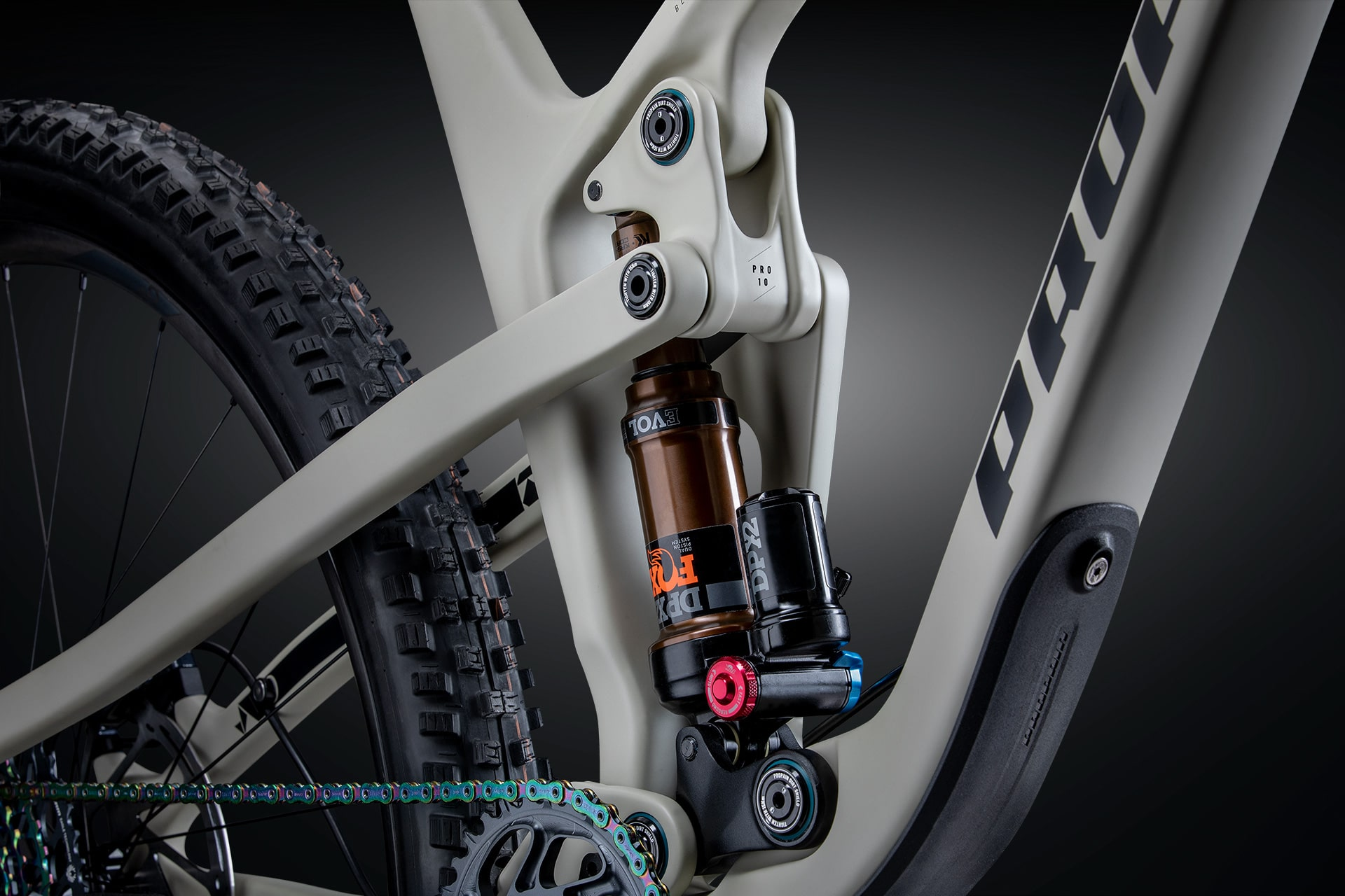 PROPAIN Hugene CF 2021 Downtube Protection Cycleholix