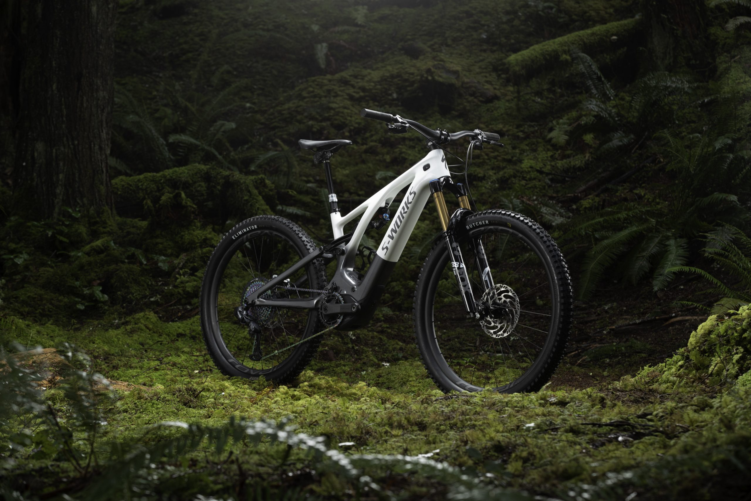 New Specialized Levo Hero Natural MG 2508 scaled