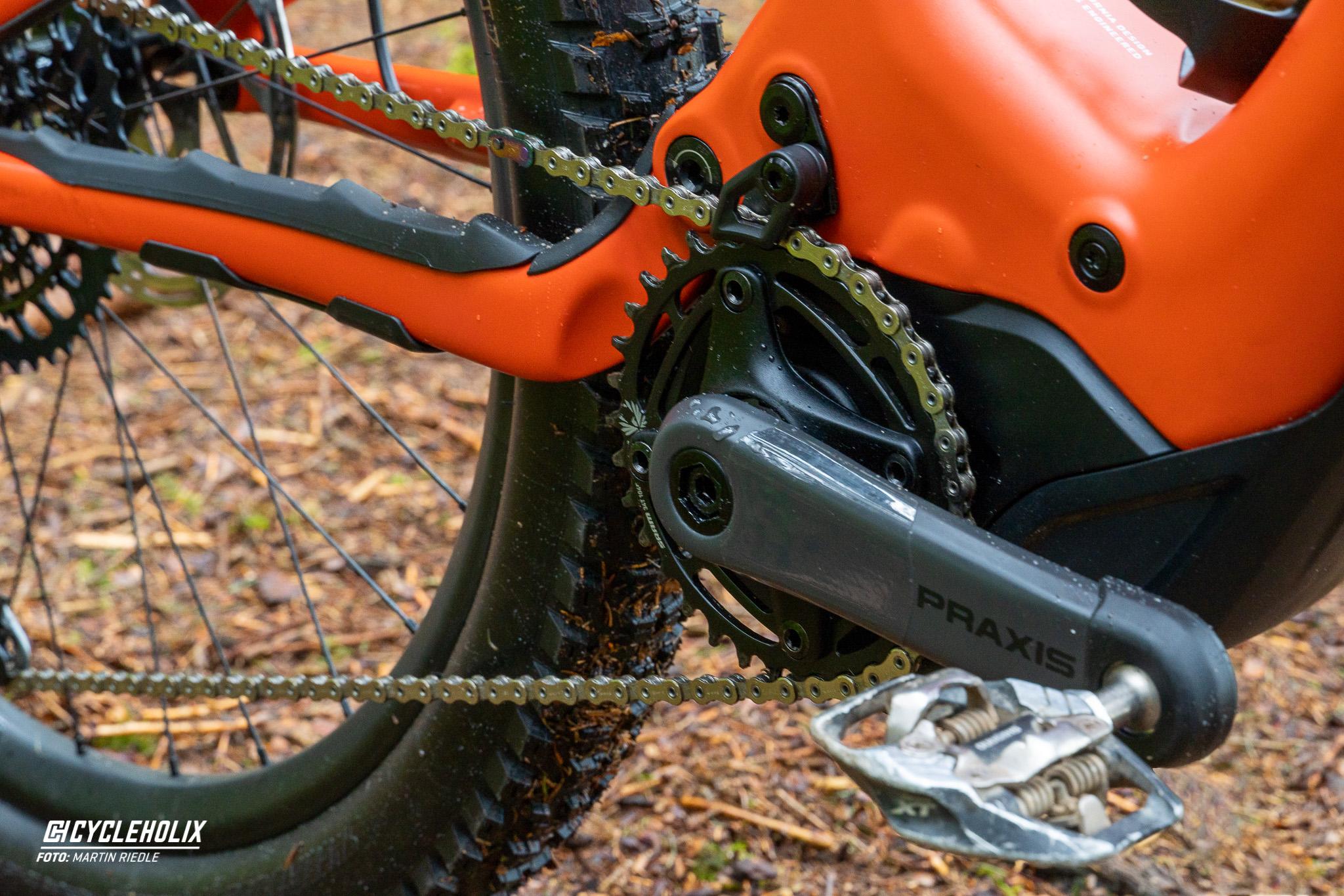 Specialized Levo 10 Cycleholix