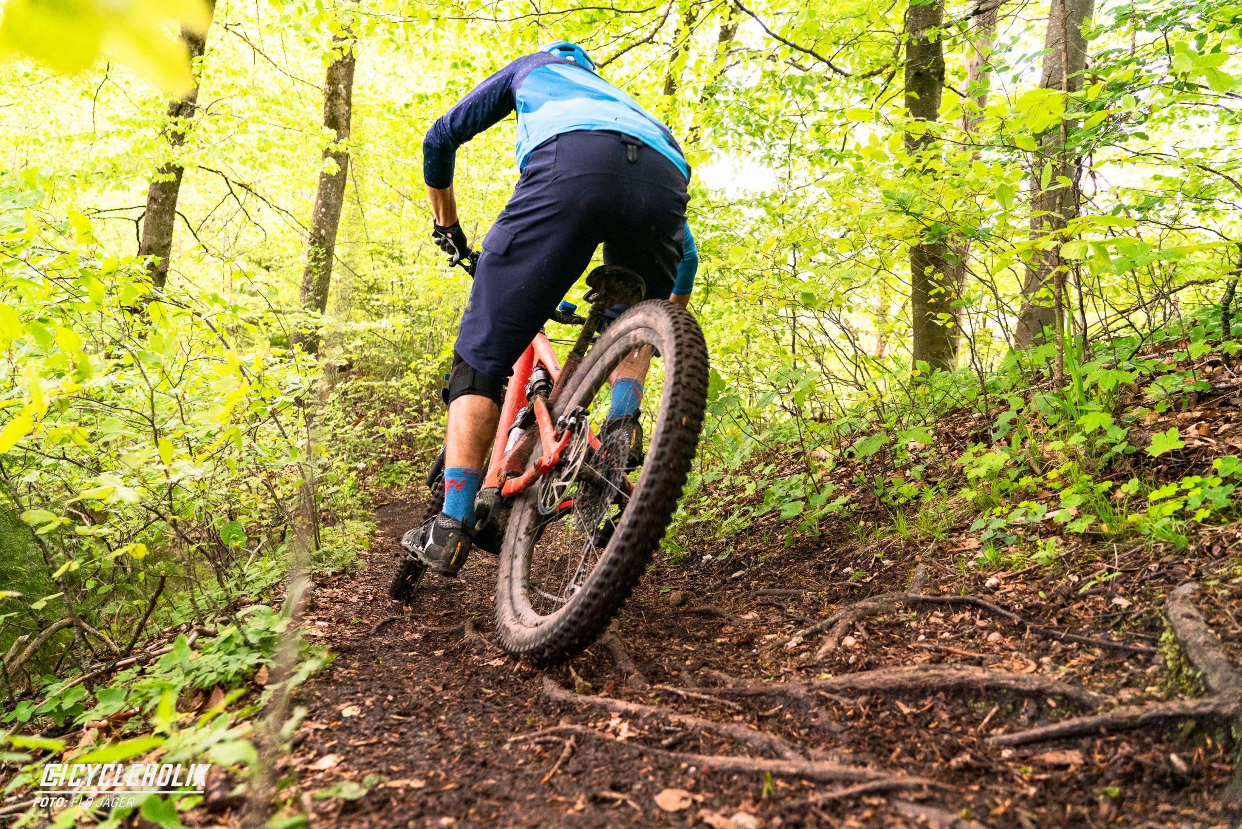 SpecializedTurboLevo Action 36 scaled Cycleholix