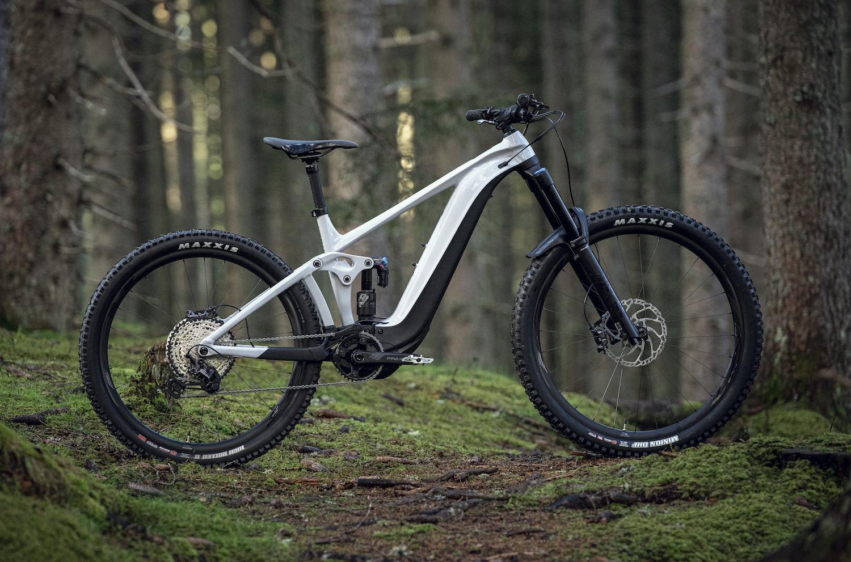 Reign E profile Cycleholix